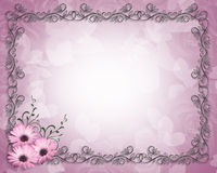 Purple Daisy Floral Border  Royalty Free Stock Photography