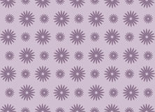 Purple daisy flower pattern Royalty Free Stock Photo