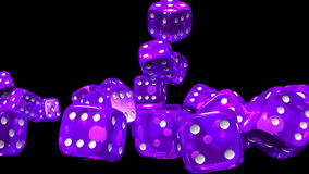 Purple Dice On Black Background stock footage