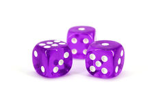 Purple Dice Royalty Free Stock Photography