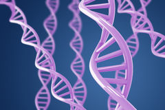Purple DNA helices on a blue background Royalty Free Stock Image