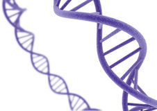 Purple DNA. DNA isolated on a white background Stock Image