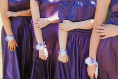 Purple dresses. Four women dressed in different luxury dresses stock photography