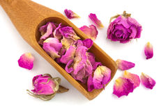 Purple dried petals of rose Royalty Free Stock Image