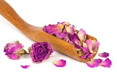 Purple dried petals of rose Royalty Free Stock Photos