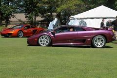 Purple lambo driving on lawn Royalty Free Stock Image