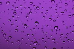 Purple Drops Royalty Free Stock Photos