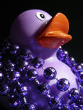 Purple Ducky & Beads. Purple Ducky wearing her Mardi Gras Beads royalty free stock photo