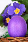 Purple easter egg and flowers Royalty Free Stock Photography