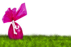 Purple Easter Egg hunt. On grass on white background Stock Photography