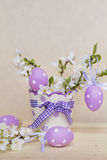 Purple easter eggs hanging on a  cherry flowers Stock Images