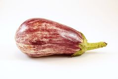 Purple eggplant Stock Images