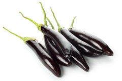 Purple eggplant. On white background Royalty Free Stock Photo