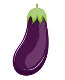 Purple Eggplant Stock Image