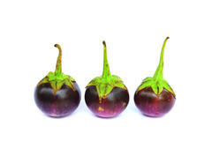 Purple eggplant group isolated Royalty Free Stock Photo