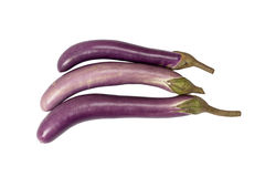 Purple eggplant Royalty Free Stock Images