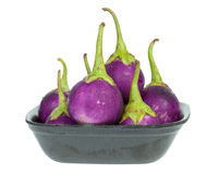 Purple eggplant in Styrofoam Food Tray Stock Images