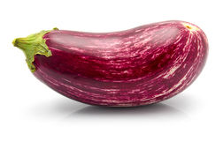 Purple eggplant vegetable isolated Stock Image