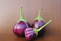 Purple Eggplant Stock Image