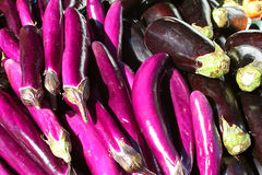 Purple Eggplants at Farmers Market Stock Image