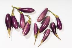 Purple Eggplants Royalty Free Stock Images