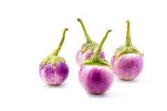 Purple eggplants. On white background Stock Photography