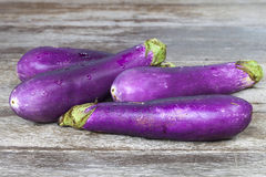 Purple eggplants Royalty Free Stock Photo
