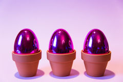 Purple eggs with a pink background Stock Image