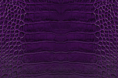 Purple embossed leather texture background Stock Photo