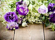 Purple eustoma Royalty Free Stock Images