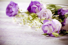Purple eustoma flowers Stock Photography