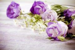 Purple eustoma flowers Stock Photography