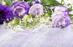 Purple eustoma flowers Royalty Free Stock Images