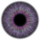 Purple Eye Iris Royalty Free Stock Photography