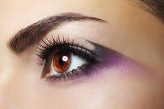 Purple Eye Makeup. Beautiful eye makeup close up royalty free stock photos