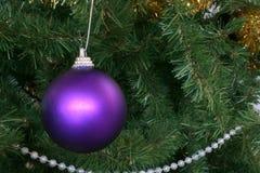 purple för 2 prydnad Royaltyfri Bild