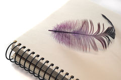 Purple feather on notebook royalty free stock photos