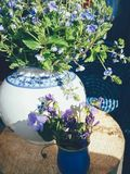 Purple field flowers in vase on blue background. Bouquet of purple field flowers in white porcelain vase, blue round wicker plate and wooden background. Still stock photos