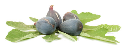 Purple fig. Ripe fresh purple fig fruits and leaf on white background Stock Photo