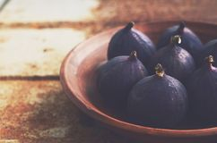 Purple figs on grunge metal background Royalty Free Stock Images