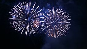 Purple Fire Flashes Of Festive Fireworks In The Night Sky Royalty Free Stock Images