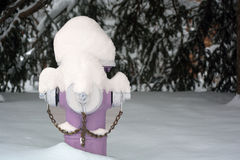Purple Fire Hydrant Covered In Snow Stock Images