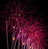 Purple fireworks Royalty Free Stock Images