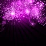 Purple Fireworks Stock Image