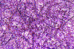 Purple floral background Stock Photography