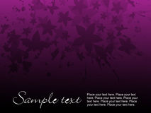 Purple floral background Royalty Free Stock Photography