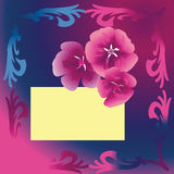 Purple floral card Royalty Free Stock Photos
