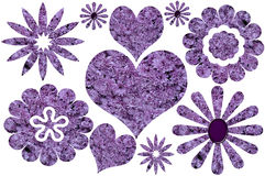 Purple Floral Collection Isolated Royalty Free Stock Photography