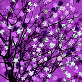Purple floral tree print Royalty Free Stock Photo