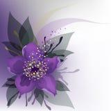 Purple flower. Beautiful decorative background with purple flower Stock Photos